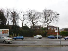 The trees rising from the station to Benslow House.